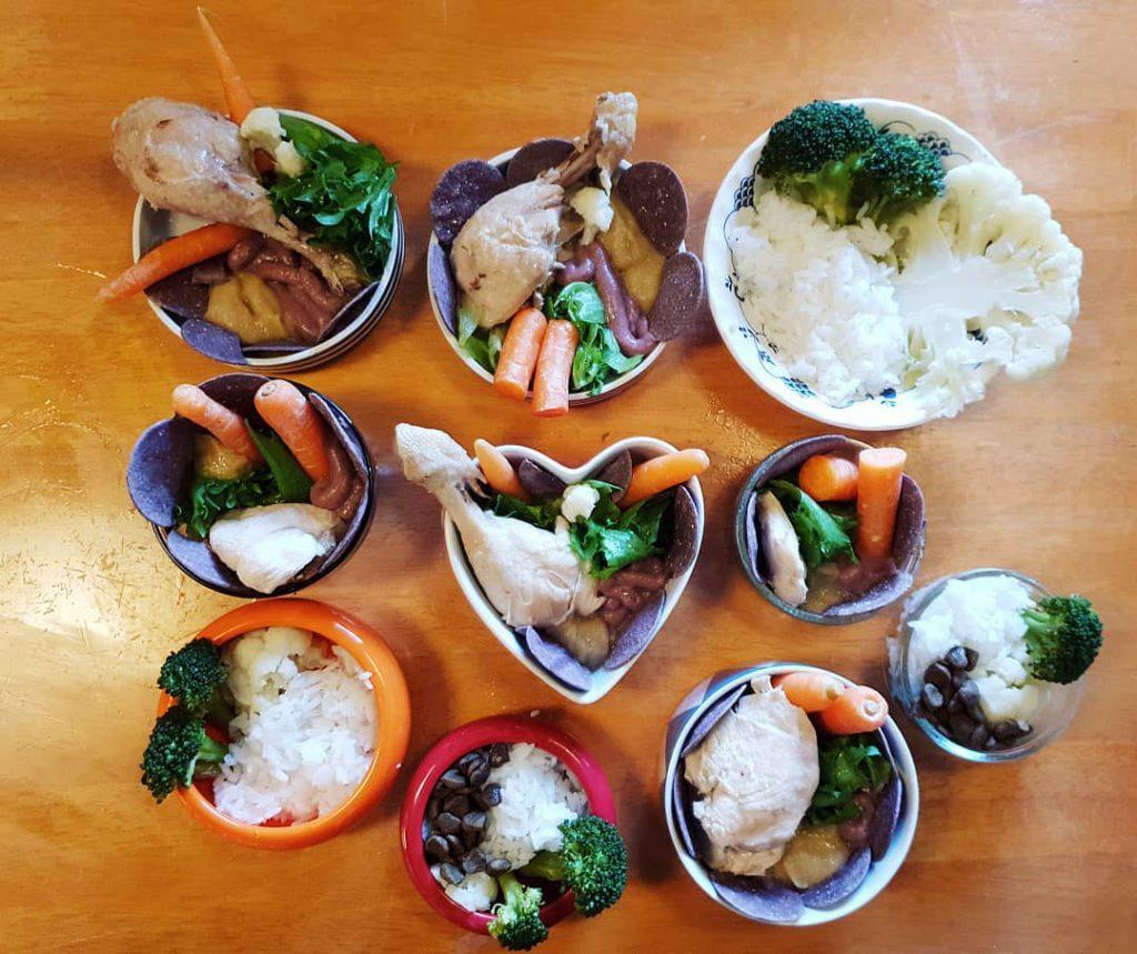 Чем кормят домашних крыс: как выбрать корм, какие фрукты и овощи давать, белковые корма и список запрещенных продуктов
