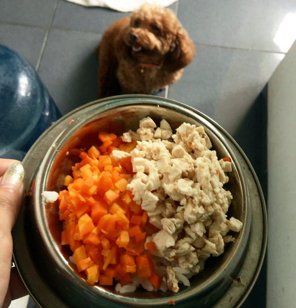 Какие овощи дают собакам, а каких лучше избегать, сколько давать овощей, скармливать вареными или сырыми